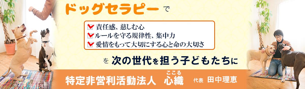 田中理恵イメージ